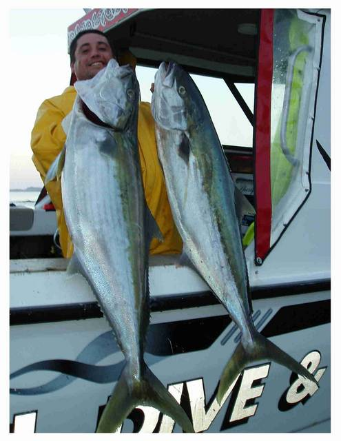 Happy angler-Two big kingies (good)